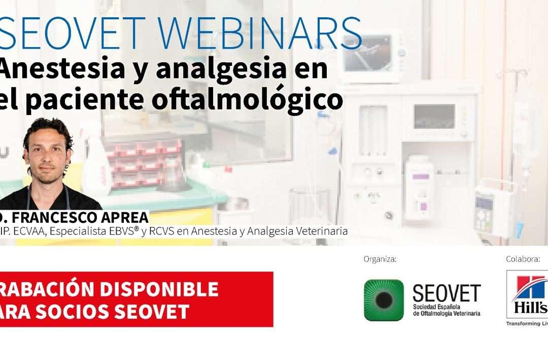 anestesia y analgesia en el paciente oftalmológico