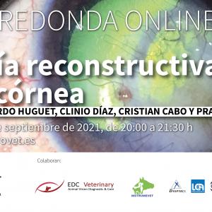 Mesa redonda online: Cirugía reconstructiva de la córnea